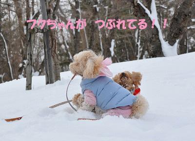 キリヌキのコピー.jpg