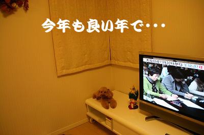 IMG_7181のコピー.jpg